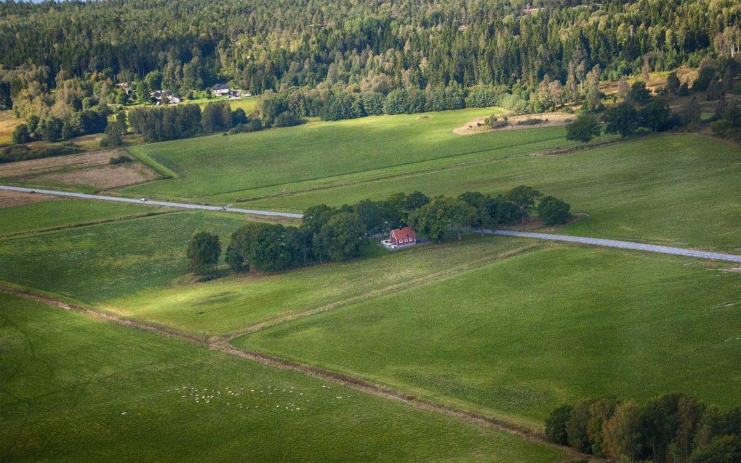 Våtängen, Brokeludd, Vilan. Foto: Bengt Grönkvist