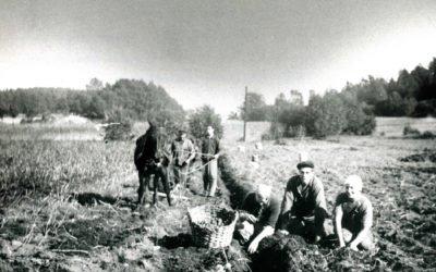Livet på ett  Muskötorp  1920-1930-talet Del 20