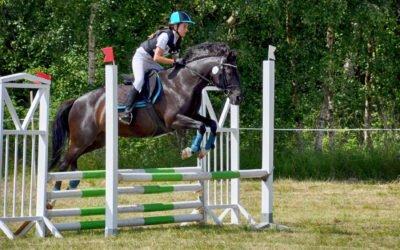 Arbottna Horse  Show för tredje året!