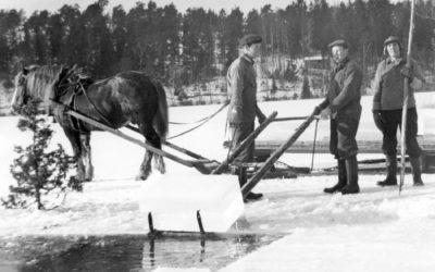 Livet på ett Muskötorp 1920-1930-talet – Del 28