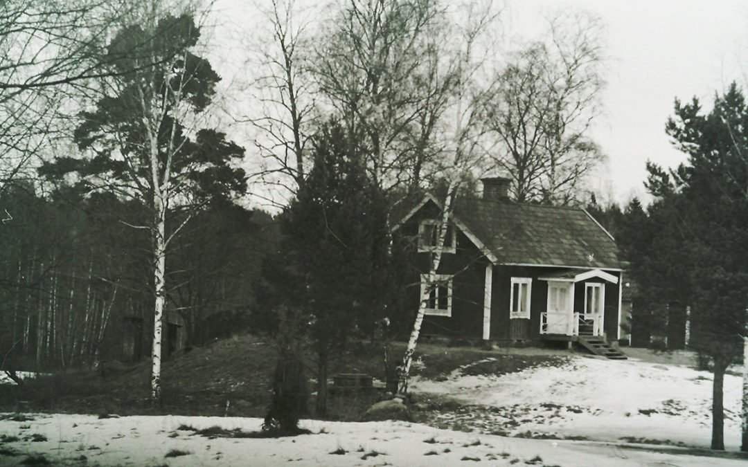 Björkholmen. Foto/reprofoto: Karl-Erik Törner