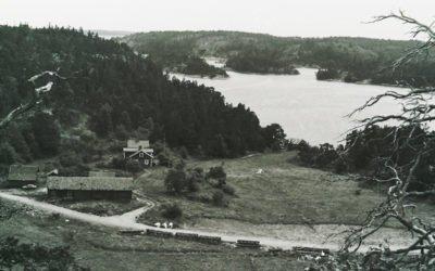Bjurshagen