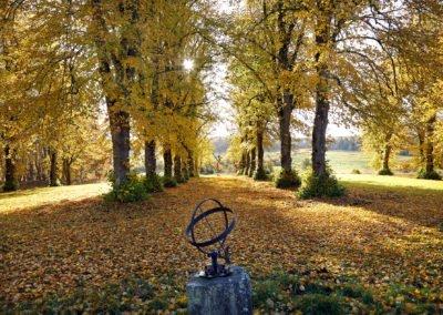 Den närbelägna parken vid Arbottna herrgård i höstskrud. Foto: Johan Bjurer