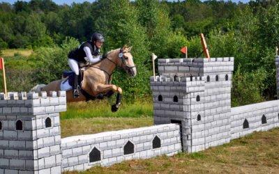 Fälttävlansallsvenskans final avgörs under Arbottna Horse Show