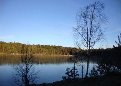 Torpa träsk. Foto. Christin Svensson