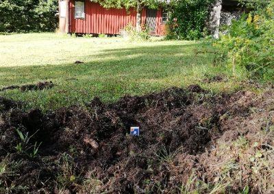 Bild från Angnäset. Foto: Torbjörn Sassersson