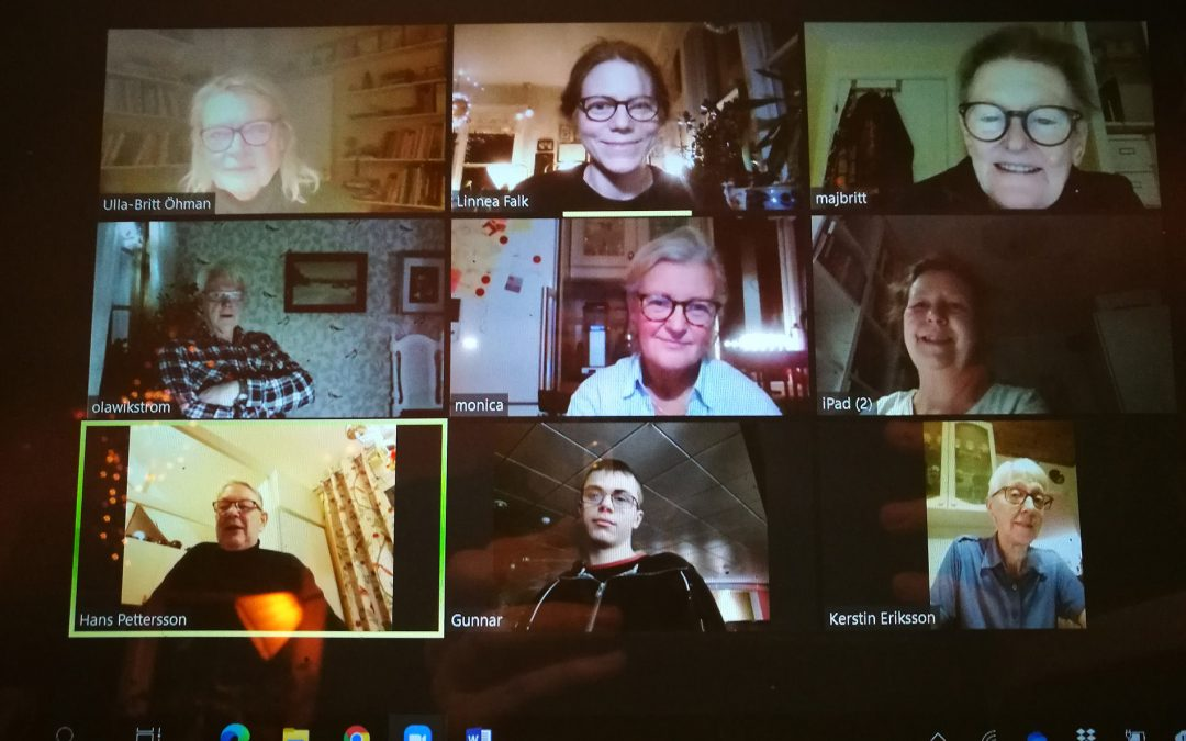Bilden ni ser är ett skärmklipp från vårt andra digitala styrelsemöte i Muskö Bygdegårdsförening.