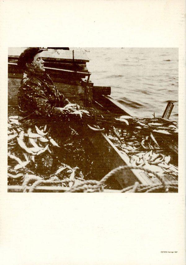 Strömmingsfisket på Muskö 1920-1945