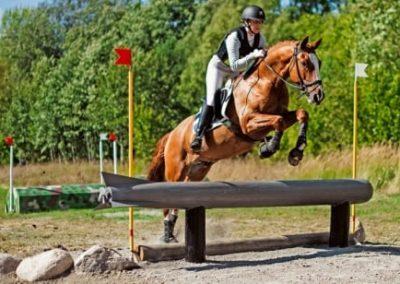 Arbottna Horse Show för sjätte året!