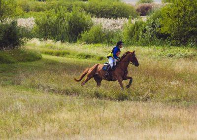 Arbottna Horse Show